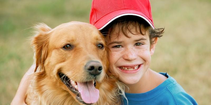 Hund spielt mit Jungen