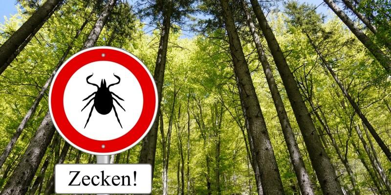 Zeckenhinweis im Wald